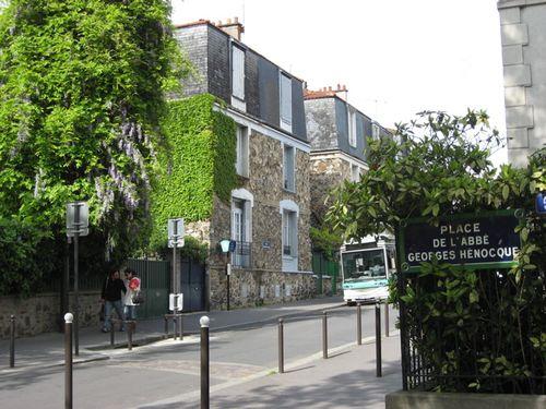 Hospital wisteria