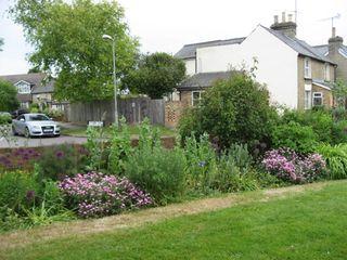Walk cameron garden