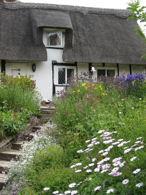 Walk thatched cottage and garden