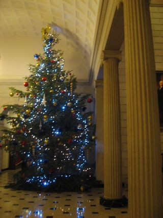 Embassy lobby xmas tree